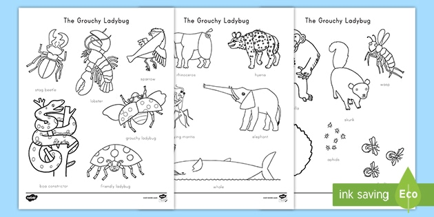 The Grouchy Ladybug Words Coloring Sheet Teacher Made