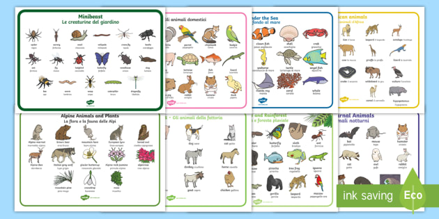 Italian English Animsld: * NEW * Animal Habitat Word Mats Resource Pack English