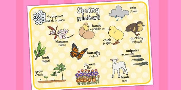 Spring Word Mat Romanian Translation - seasons, season, literacy