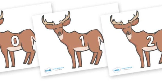 Numbers 0-31 on Deer - 0-31, foundation stage numeracy, Number recognition, Number flashcards, counting, number frieze, Display numbers, number posters