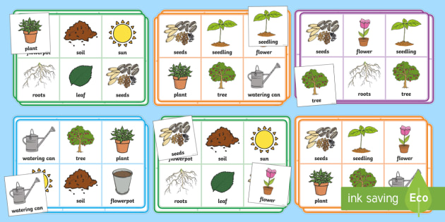 plants and growth bingo and lotto game eyfs early years ks1 plants and. Black Bedroom Furniture Sets. Home Design Ideas