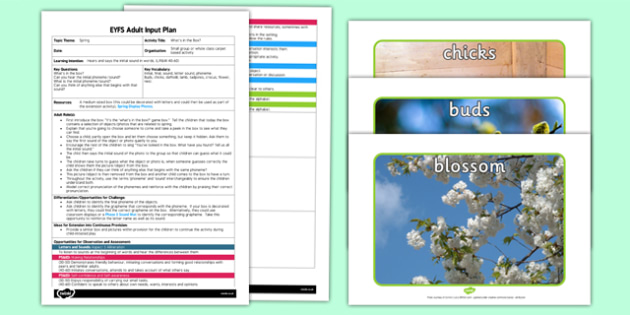 Spring Whats in the Box EYFS Adult Input Plan and Resource Pack - seasons, planning