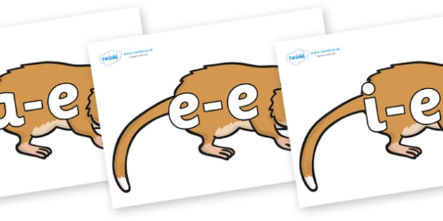 Modifying E Letters on Hamsters - Modifying E, letters, modify, Phase 5, Phase five, alternative spellings for phonemes, DfES letters and Sounds