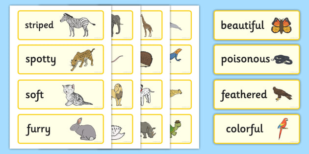 animal adjectives word cards animal adjectives word cards. Black Bedroom Furniture Sets. Home Design Ideas