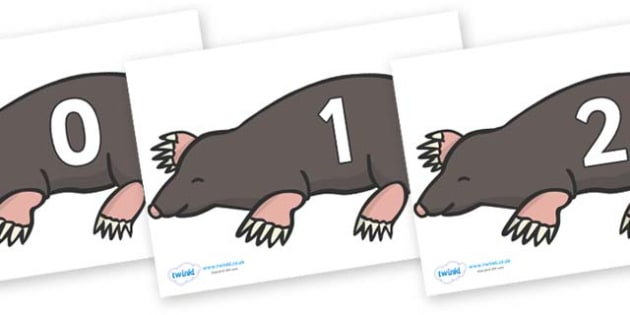 Numbers 0-31 on Moles - 0-31, foundation stage numeracy, Number recognition, Number flashcards, counting, number frieze, Display numbers, number posters