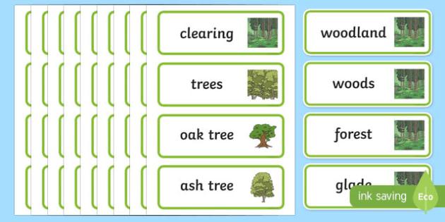 Woodland Word Cards - woodland, trees, word cards, cards, flashcards, woods, forest, birds, leaf, fox, deere, bark, fern