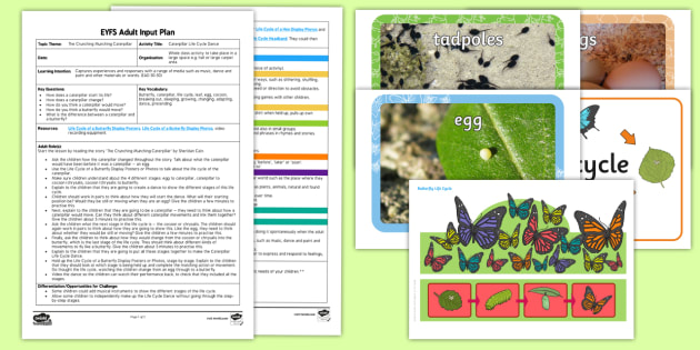 EYFS Caterpillar Life Cycle Dance Adult Input Plan and Resource Pack - The Crunching Munching Caterpillar, Sheridan Cain, life cycle of a butterfly, movement, physical dev
