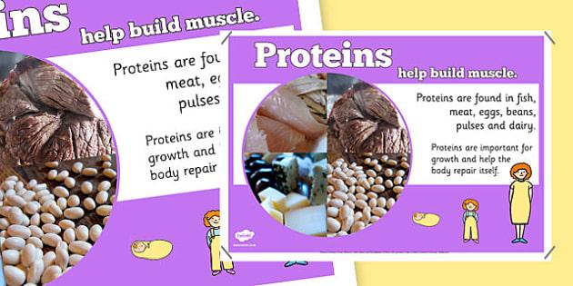 Year 6 Proteins Nutrients Display Poster - healthy eating, food