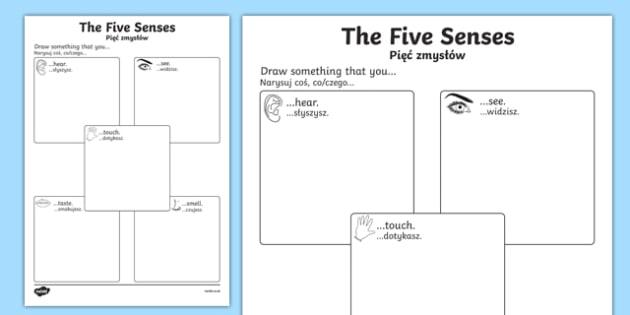 The Five Senses Drawing Worksheet Activity Sheet Polish