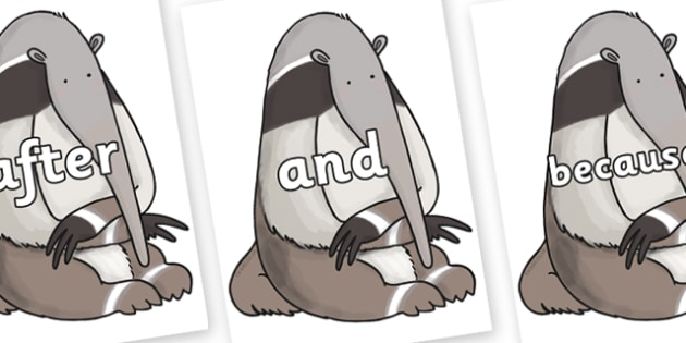 Connectives on Anteater to Support Teaching on The Great Pet Sale - Connectives, VCOP, connective resources, connectives display words, connective displays