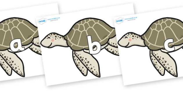 Phase 2 Phonemes on Turtles - Phonemes, phoneme, Phase 2, Phase two, Foundation, Literacy, Letters and Sounds, DfES, display
