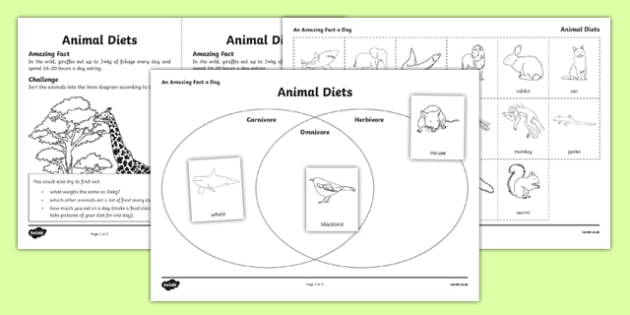 animal diets worksheet activity sheet amazing fact a day. Black Bedroom Furniture Sets. Home Design Ideas