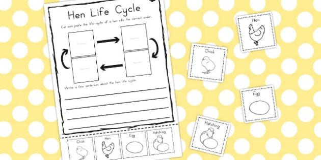 Hen Life Cycle Sentence Writing Worksheet / Activity Sheet - australia, cycle, worksheet