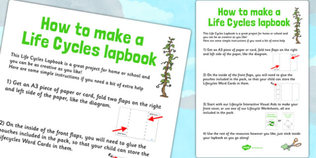 Life Cycles Lapbook Instructions Sheet - lapbooks, instructions