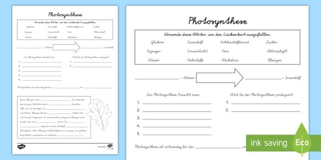 Atemberaubend Photosynthese Arbeitsblatt Bilder - Arbeitsblatt ...