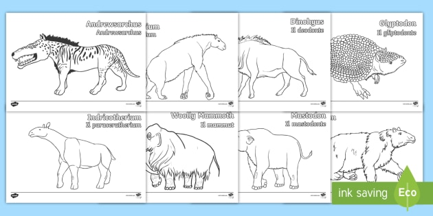 Italian English Animsld: Stone Age Animals Colouring Pages English/Italian