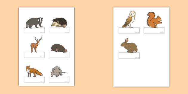 Editable Self Registration Labels (Woodland Animals) - Self registration, register, editable, labels, registration, child name label, printable labels