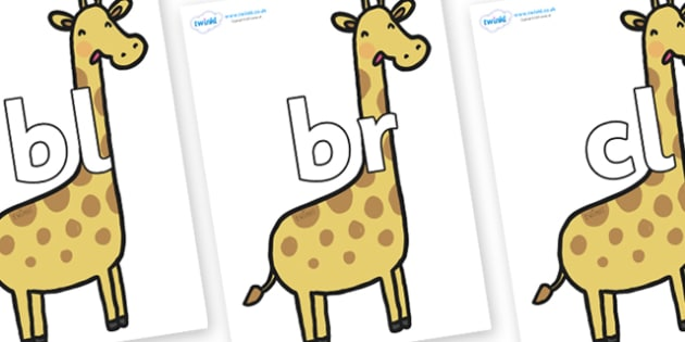Initial Letter Blends on Giraffes - Initial Letters, initial letter, letter blend, letter blends, consonant, consonants, digraph, trigraph, literacy, alphabet, letters, foundation stage literacy