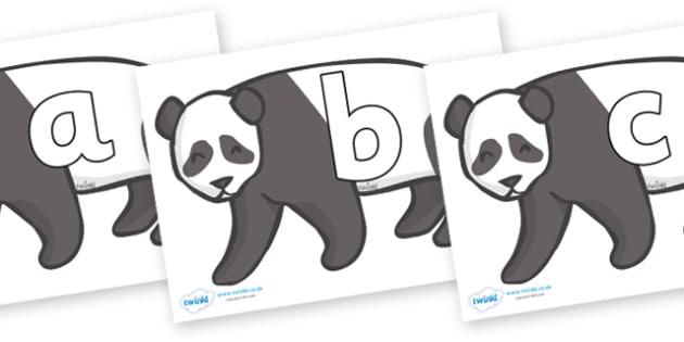 Phoneme Set on Pandas - Phoneme set, phonemes, phoneme, Letters and Sounds, DfES, display, Phase 1, Phase 2, Phase 3, Phase 5, Foundation, Literacy