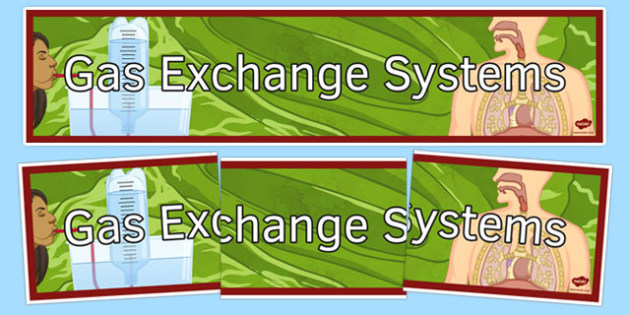 Gas Exchange Systems Display Banner - gas exchange systems, display banner, display, banner