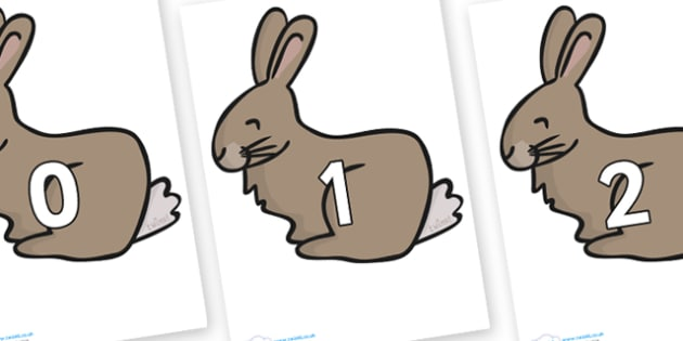 Numbers 0-50 on Rabbit - 0-50, foundation stage numeracy, Number recognition, Number flashcards, counting, number frieze, Display numbers, number posters