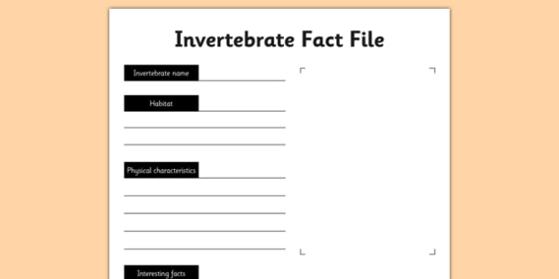 Invertebrate Fact File Activity Sheet - living things, habitats, variation, classification, grouping, invertebrates, characteristics, keys, worksheet