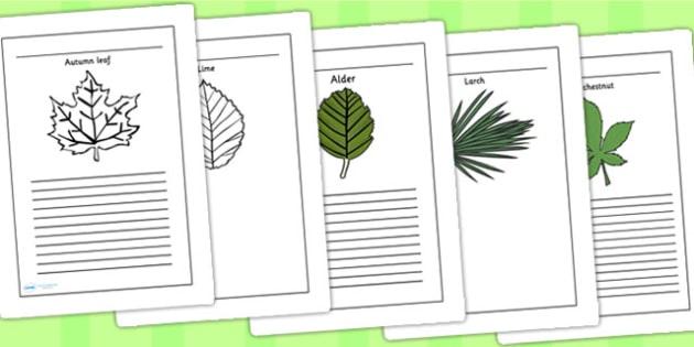 Leaves Writing Frames - leaves, leaf, writing, write, frames