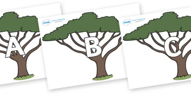 A-Z Alphabet on Acacia Trees - A-Z, A4, display, Alphabet frieze, Display letters, Letter posters, A-Z letters, Alphabet flashcards