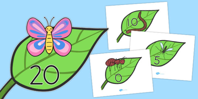 Numbers 0 20 On Minibeasts - display number, counting, minibeasts