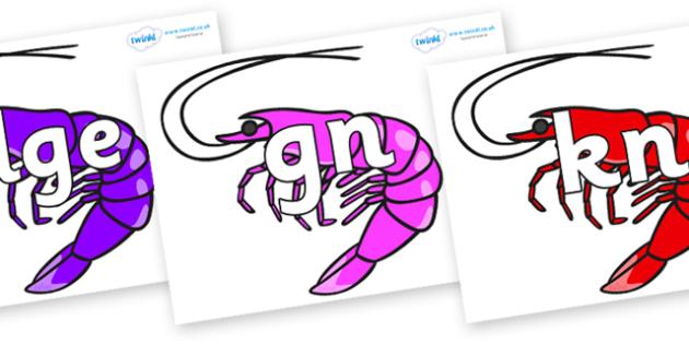 Silent Letters on Shrimps - Silent Letters, silent letter, letter blend, consonant, consonants, digraph, trigraph, A-Z letters, literacy, alphabet, letters, alternative sounds