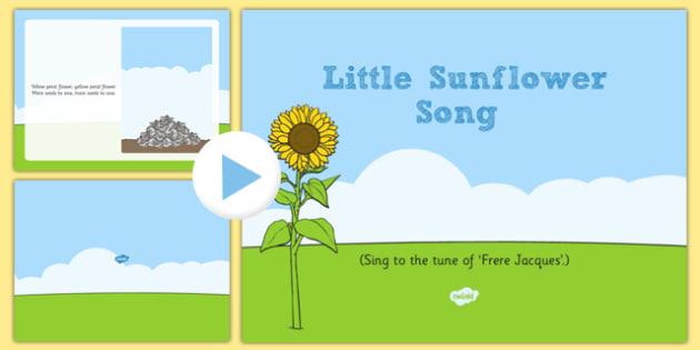 Little Sunflower Song PowerPoint