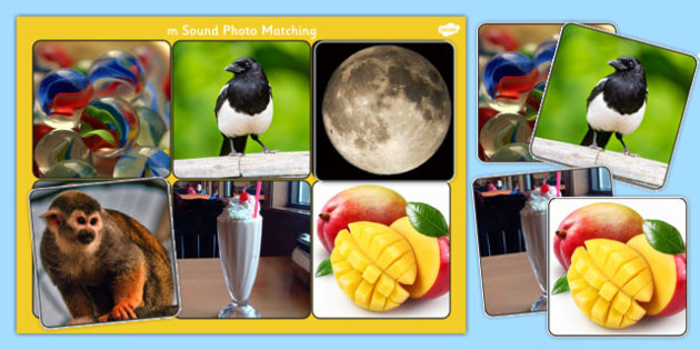 Initial m Sound Photo Matching Board and Cards - sounds, phonics