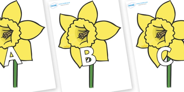 A-Z Alphabet on Daffodils - A-Z, A4, display, Alphabet frieze, Display letters, Letter posters, A-Z letters, Alphabet flashcards