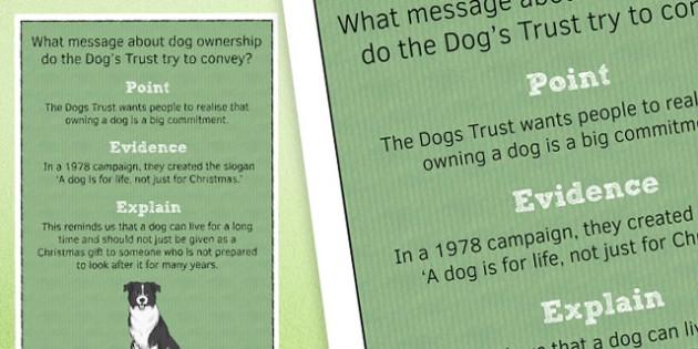 Point Evidence Explain Poster 4 - point, evidence, explain, poster, display, classroom, ks3