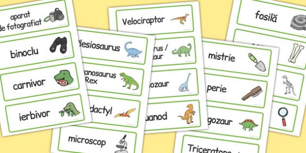 La muzeul de dinozauri - Cartonașe pentru jocul de rol