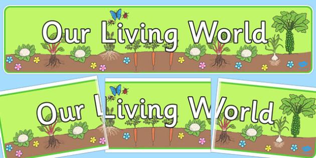 Our Living World Display Banner - living world, display banner
