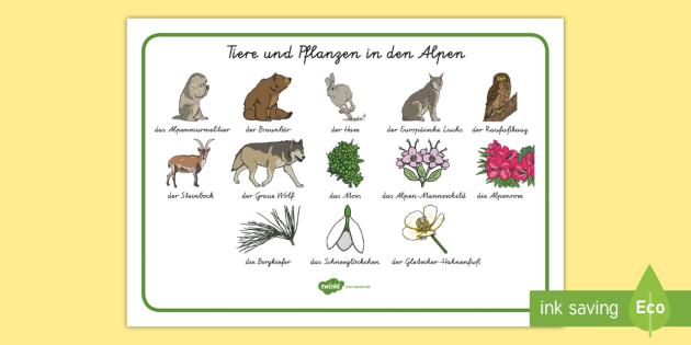 Charmant Schlösser Ks1 Arbeitsblatt Fotos - Arbeitsblatt Schule ...
