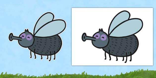 Editable Fly Template - editable, fly template, fly, template, edit, display