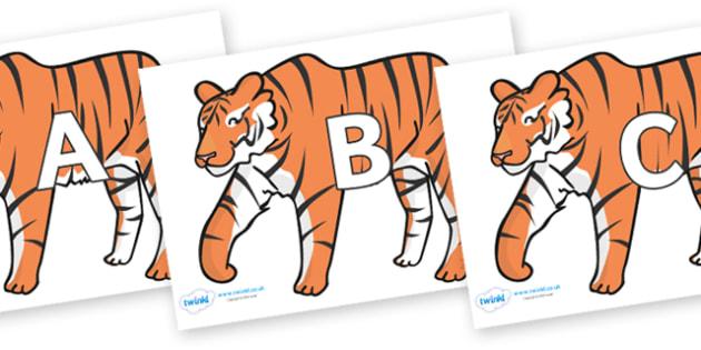 A-Z Alphabet on Tigers - A-Z, A4, display, Alphabet frieze, Display letters, Letter posters, A-Z letters, Alphabet flashcards