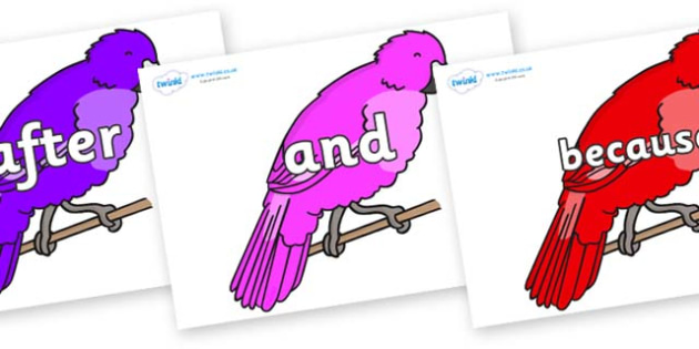 Connectives on Parakeets - Connectives, VCOP, connective resources, connectives display words, connective displays
