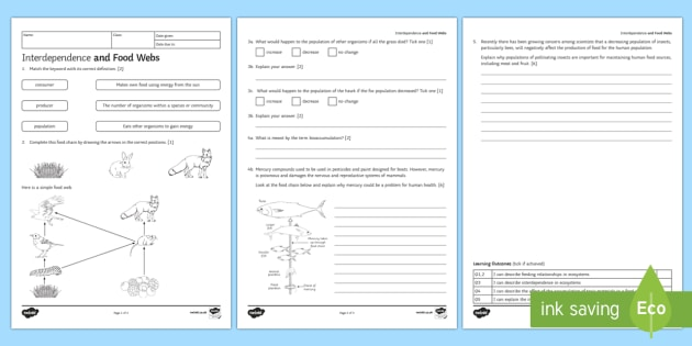 graphic about Food Chain Printable Activities identified as KS3 Interdependence and Meals Webs Research Worksheet