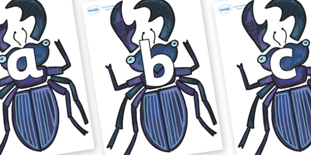 Phoneme Set on Stag Beetle to Support Teaching on The Bad Tempered Ladybird - Phoneme set, phonemes, phoneme, Letters and Sounds, DfES, display, Phase 1, Phase 2, Phase 3, Phase 5, Foundation, Literacy