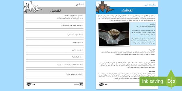 الخفافيش - أوراق عمل للفهم القرائي  - الخفافيش، خفاش، أوراق عمل، متمايز،عربي، قراءة، نشاط،