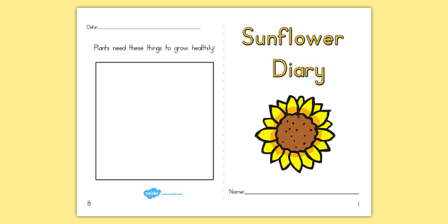 Sunflower Diary Writing Frame - sunflower, sunflower diary, write