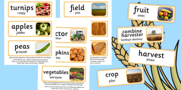 Harvest Topic Words Polish Translation - polish, harvest, topic, words, display
