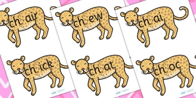 ch Sound And Vowel Animal Jigsaw - sound, vowels, jigsaw, animals