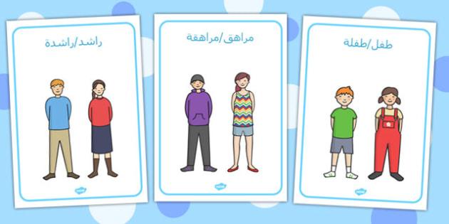 ملصقات عرض نمو الإنسان - نمو الإنسان، النمو، نمو الجسم