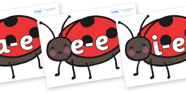 Modifying E Letters on Ladybirds - Modifying E, letters, modify, Phase 5, Phase five, alternative spellings for phonemes, DfES letters and Sounds