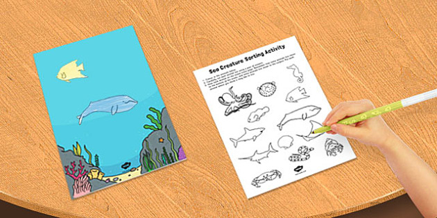 Sea Creature Sorting Activity - sea, creature, sorting, activity