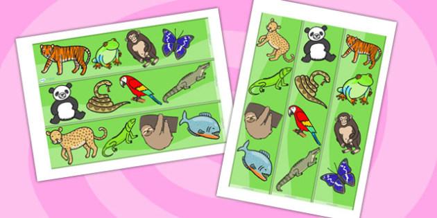 Jungle & Rainforest Display Borders - Jungle, Rainforest, Display border, border, display, vines, A4, display, snake, forest, ecosystem, rain, humid, parrot, monkey, gorilla